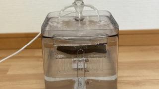 猫の自動給水器で手入れ簡単なもの3選!体験談